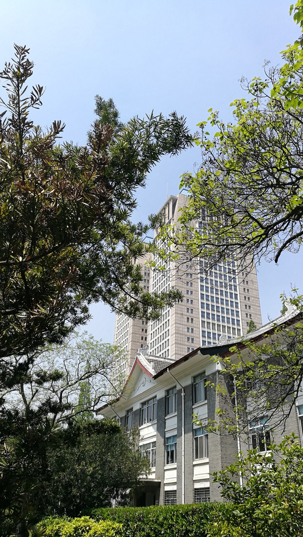 图一:修缮过的老宿舍楼和光华楼在一起(龚静 摄于2019年春).jpg